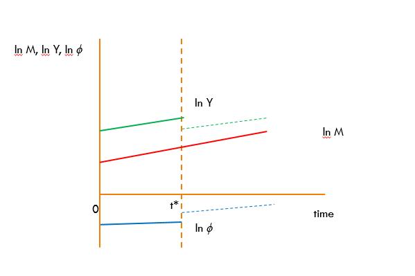 White Graph 7