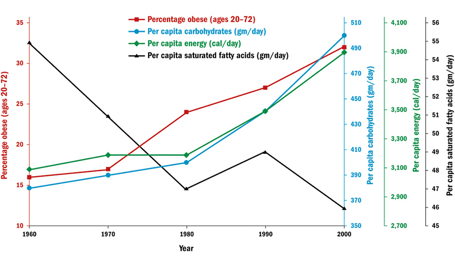 Why Does the Federal Government Issue Damaging Dietary Guidelines ...