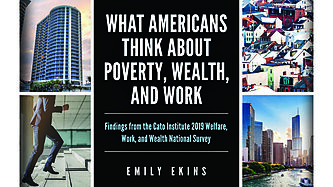 Cato 2019 Welfare, Work, and Wealth National Survey