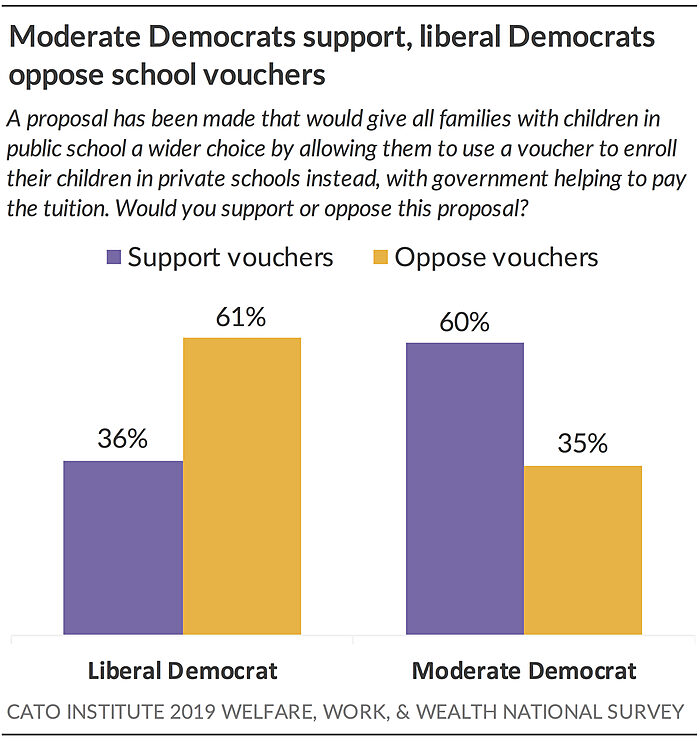 Moderate Democrats support, liberal Democrats oppose school vouchers