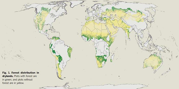 Media Name: forestdistribution.png