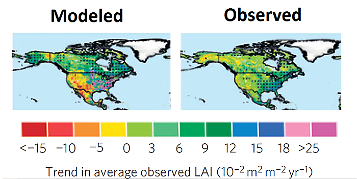 Figure 2. Modeled (left) and observed (right) changes in leaf area index (LAI) for North America, 1982-2009. Source: Zhu et al., 2016.