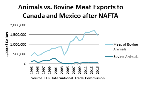 Animals vs. Bovine Meat Exports