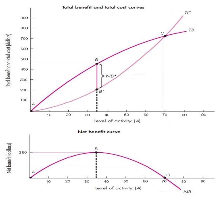 Marginal Benefit Cost Regulation