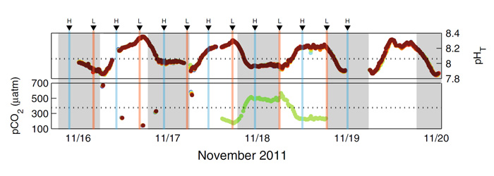 Figure 1. Time series of pHT (top panel) and pCO2 (bottom panel) in Pool 100, Ofu, American Samoa from November 16-20, 2011. Vertical blue and orange lines show the occurrence of high and low tides, respectively. Gray vertical shading shows the period from sundown to sunrise. The different colored circles represent data that were collected from different locations in Pool 100 and the dashed horizontal black lines represent the mean value of each parameter in the offshore ocean. Adapted from Koweek et al. (2015).