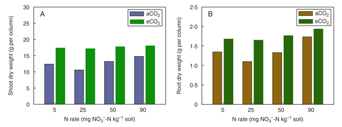 Figure 1. Shoot (Panel A) and root (Panel B) biomass of field pea grown for 15 weeks under either an ambient (aCO2) or elevated (eCO2) carbon dioxide concentration and with 5, 25, 50 or 90 mg NO3--N kg-1 soil.