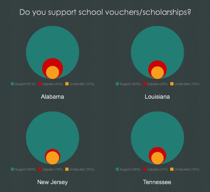 BAEO Survey: Support for School Vouchers